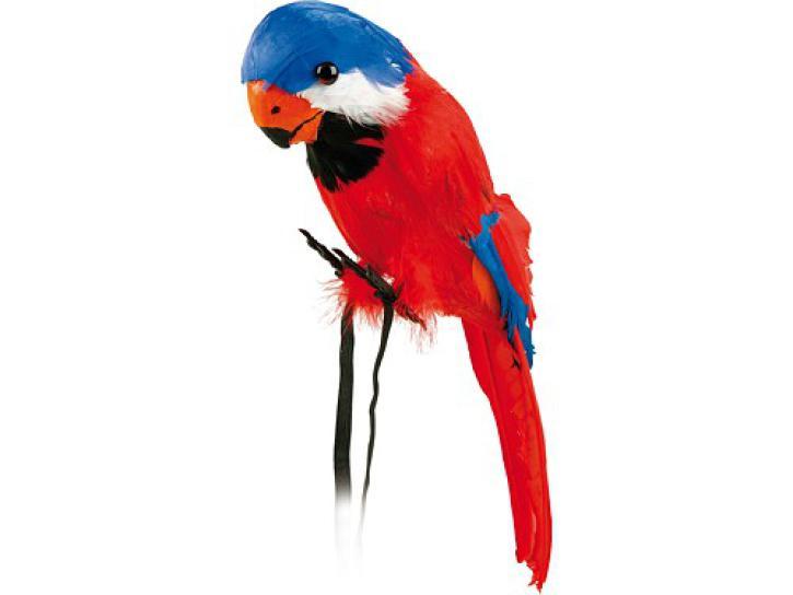 Papagai groß sort.