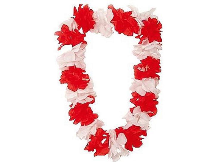 Hawaiikette rot/weiß