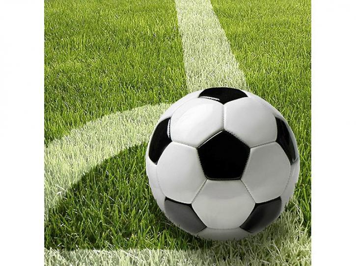 Servietten Fußball 33x33cm 20 Stück
