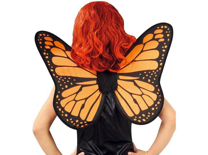 Flügel Schmetterling