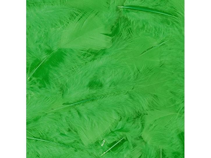 Federn grün 100 Stk.