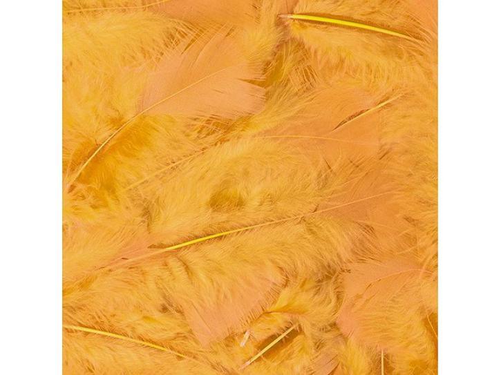 Federn gelb 100 Stk.