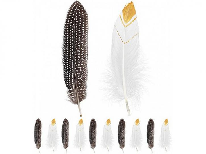 Federn Indianer 12 Stk.